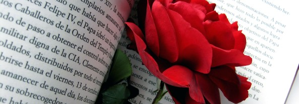 rosa libro2