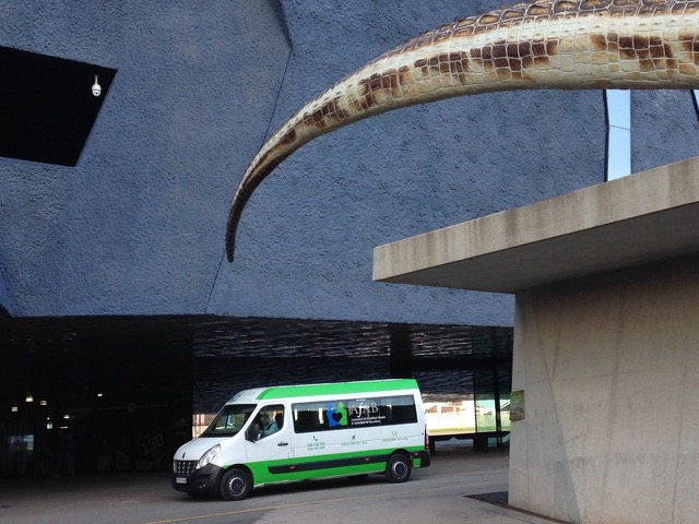 museublau7